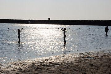 Balspel in het water van Nico Orie