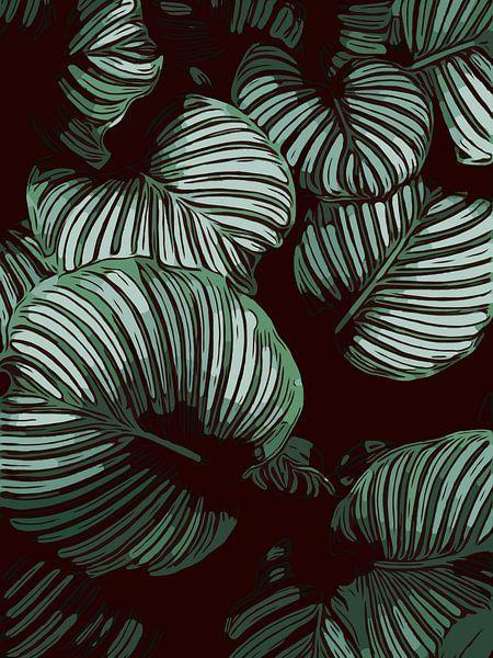 Calathea bladeren - Plantenliefde van The Art Kroep