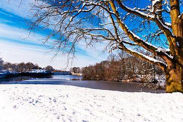 Winterlandschap in Nederland met sneeuw en zon. von Brian Morgan
