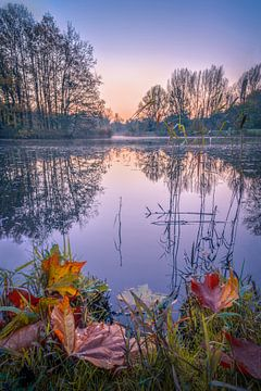 Blaue Stunde im Herbst von Mark Bonnenberg