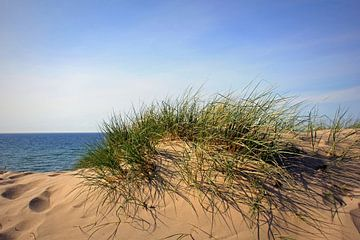 Farbenfrohe Dünen van Ostsee Bilder