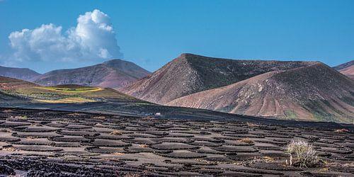 Landschap Lanzarote- Canarische Eilanden- wijnstreek La Geria van Harrie Muis
