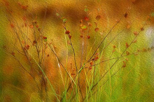 Grassy von Susan Hol