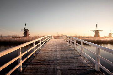 Brücke mit Mühlen bei Kinderdijk im Holland von Claire Droppert
