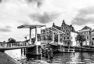 Brug en grachtenpanden in Haarlem van