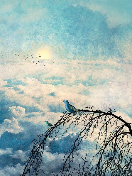HEAVENLY BIRDS III-B2 von Pia Schneider