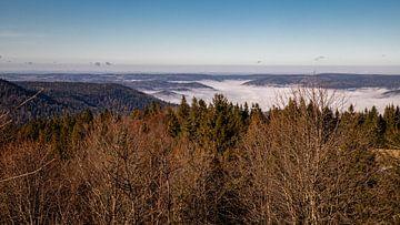 Blick über das Moseltal im Nebel von Alexander Wolff