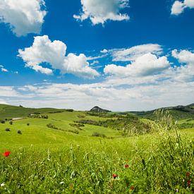 Tuscany hills van Laura Vink
