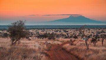 Kenia zonsopkomst van