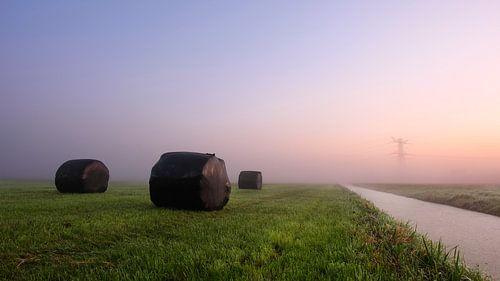 Nederlands polderlandschap