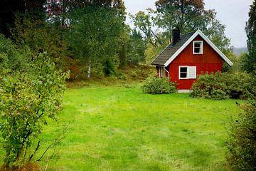 Schwedenhäuschen im Wald van Heike Hultsch