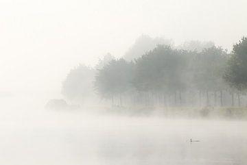Der Nebel von Hetwie van der Putten