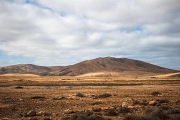 Parque Rural de Betancuria, Fuerteventura, Kanarische Inseln von Daan Duvillier