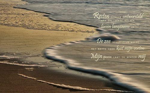 De zuiverende zee (1) van