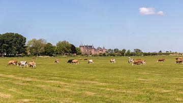 Niederländische Landschaft bei Muiderslot von STEVEN VAN DER GEEST