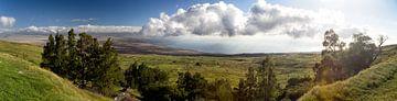 Westküste von Big Island, Hawaii von Dirk Rüter