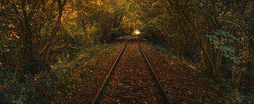 Spoorweg zoekend naar het licht van