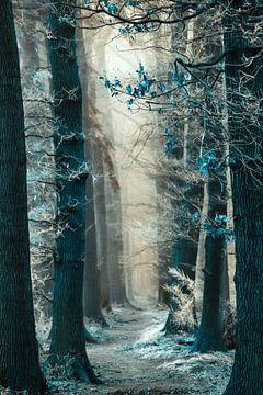 On my way to the Snow Queen van Lars van de Goor