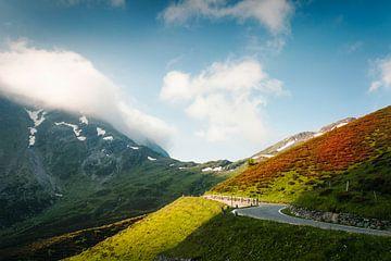 Splügenüass, Graubünden, Schweiz von Dirk Wüstenhagen