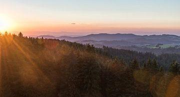 Goldene Stunde im Schwarzwald von Sander Strijdhorst