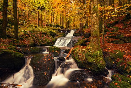 Nagelsteiner Wasserfälle van Dennis Six