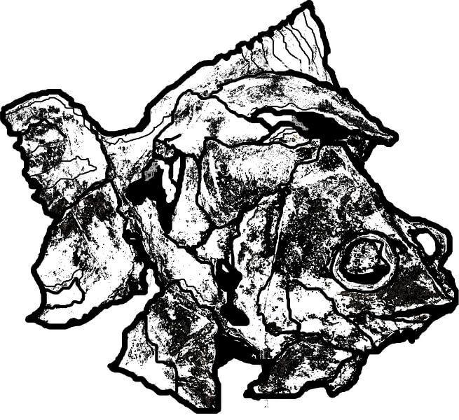 Prehistorische vis van Ruud van Koningsbrugge