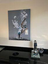 Kundenfoto: Eisvogel von Tariq La Brijn, auf hd metal