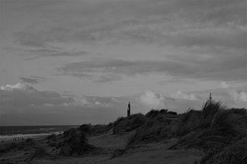 Die Dünen der Maasvlakte von Sanne van der Plaat