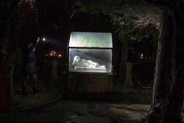 Het graf van Louise de Block van Michelle Peeters