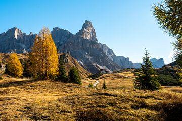 Herfstkleuren op hoogte in de Dolomieten van