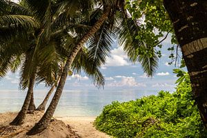 Strand anse royale auf der Seychelleninsel Mahé