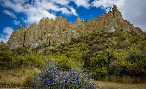 Imposante klei rotsen, Nieuw Zeeland
