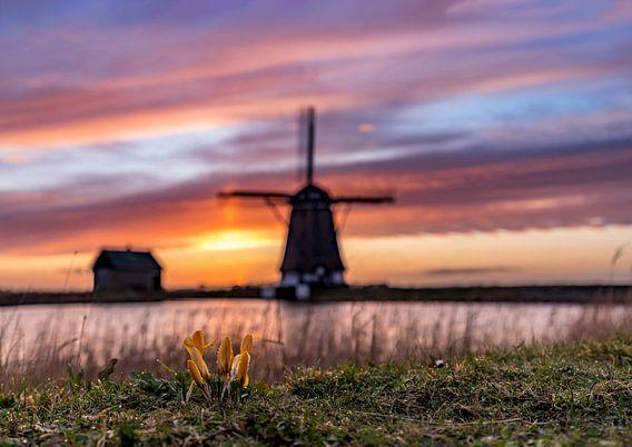 Molen het Noorden zonsondergang Texel