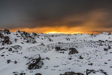 Gunnuhver in de sneeuw