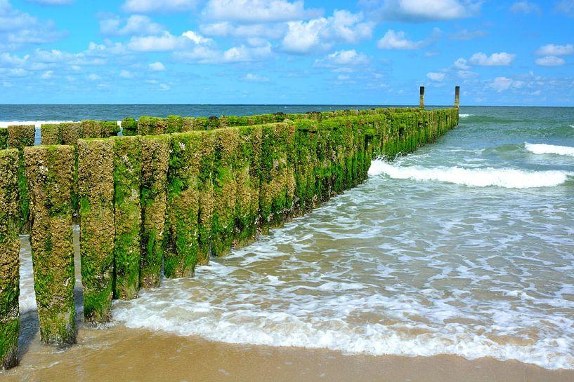 Houten golfbreker op het strand van Domburg van 7Horses Photography