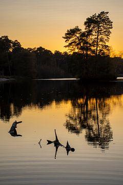 Zonsondergang met weerspiegeling in water.