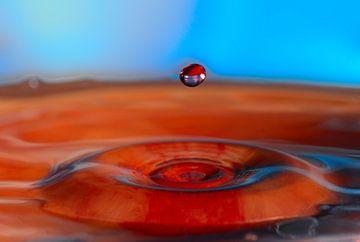Rote Wasser von Peter Felberbauer