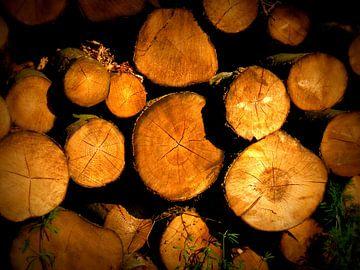 Houtstammen op stapel. Wood logs. van Joke Schippers