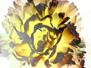 FlowerPower Fantasy 14