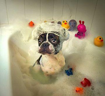 Le bain, DDiArte  sur 1x