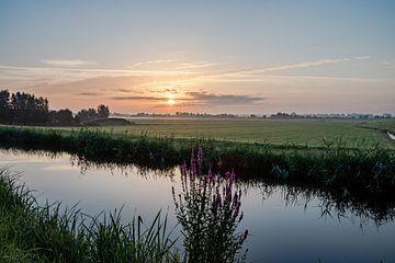 Niederländische Landschaft Sonnenuntergang Sonnenaufgang Wiesenblumen von Déwy de Wit