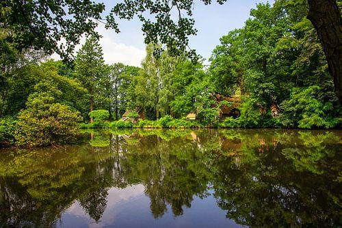 Natuurgebied met spiegelglad meer.