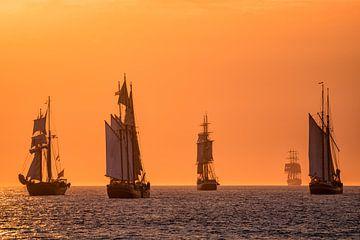 Sailing ships on the Hanse Sail van Rico Ködder
