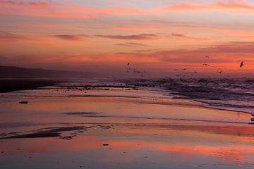 Het strand oranje kleuren van Ferdinand Mul