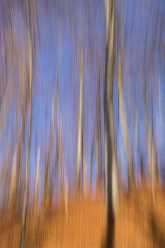 Blurred van Monika Scheurer