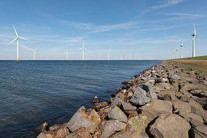 Windmolenpark in het water en op het land van