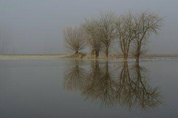 Ruhe... Niederrhein *Bislicher Insel* van wunderbare Erde