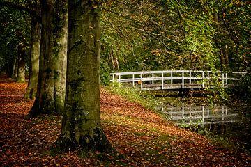 Forêt d'automne avec pont sur Han van der Staaij