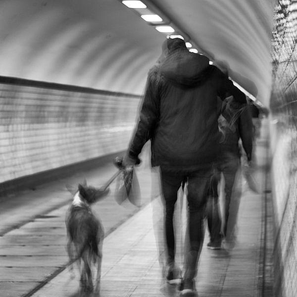 Antwerpener Tunnel von Guy Lambrechts