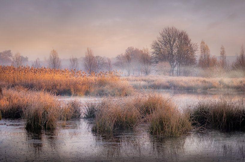 Mistige ochtend aan de Kettingdijk van Peschen Photography